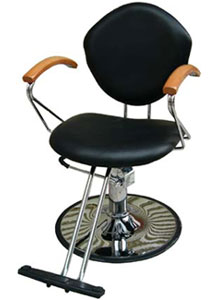 Styling Chair SBD-3008