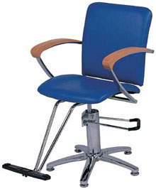 Styling Chair SBD-3019